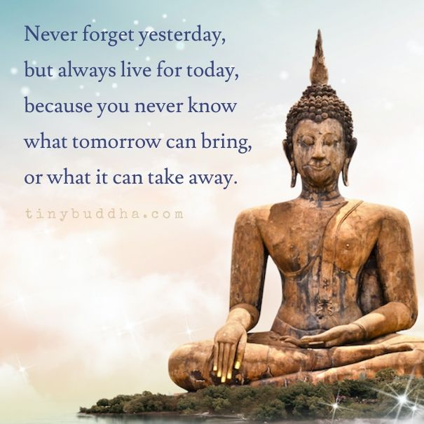 Live For Today Quotes Amazing Never Forget Yesterday But Always Live For Today Because You