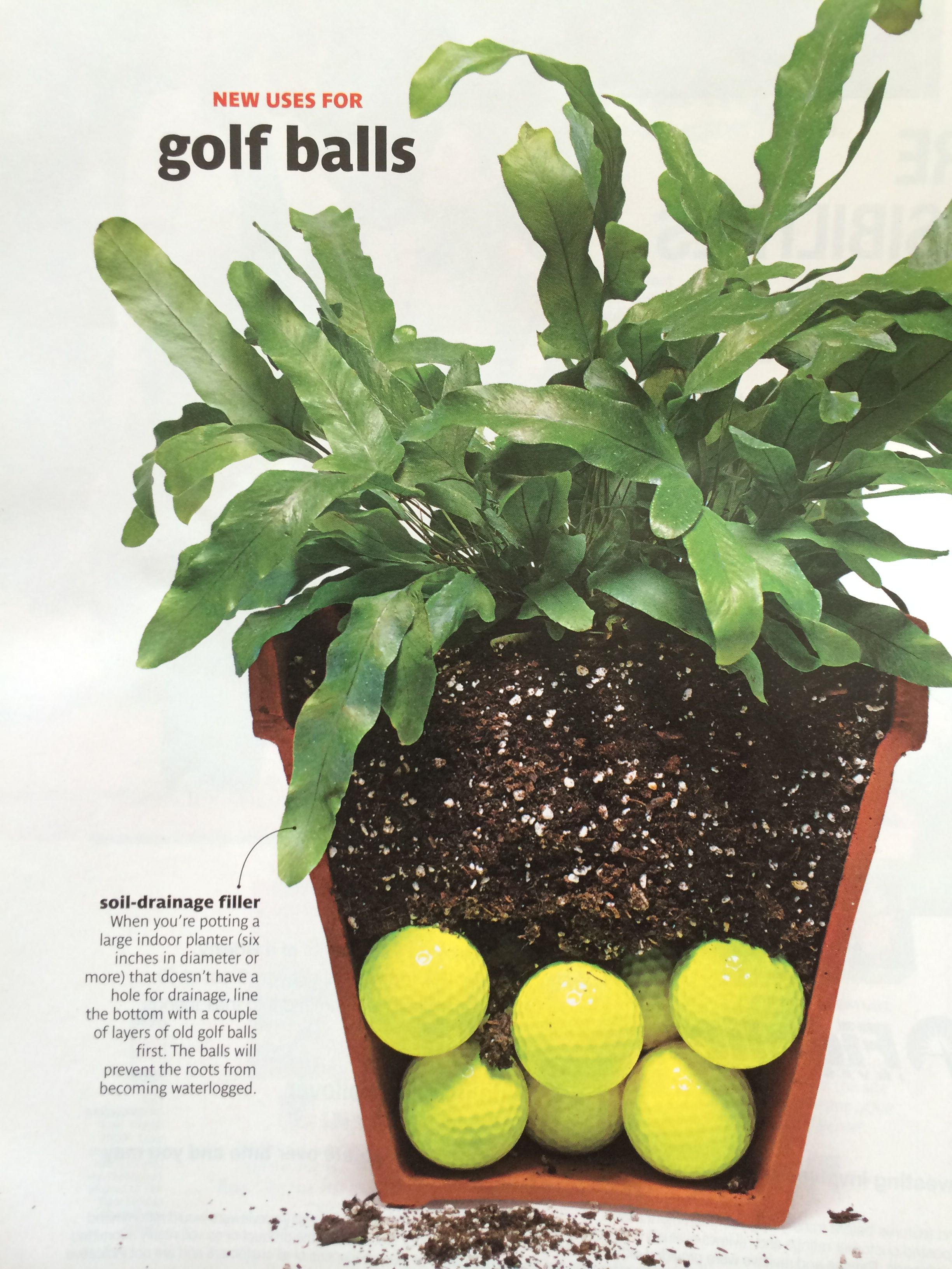 Use Golf For Soil Drainage In Pots Without Holes