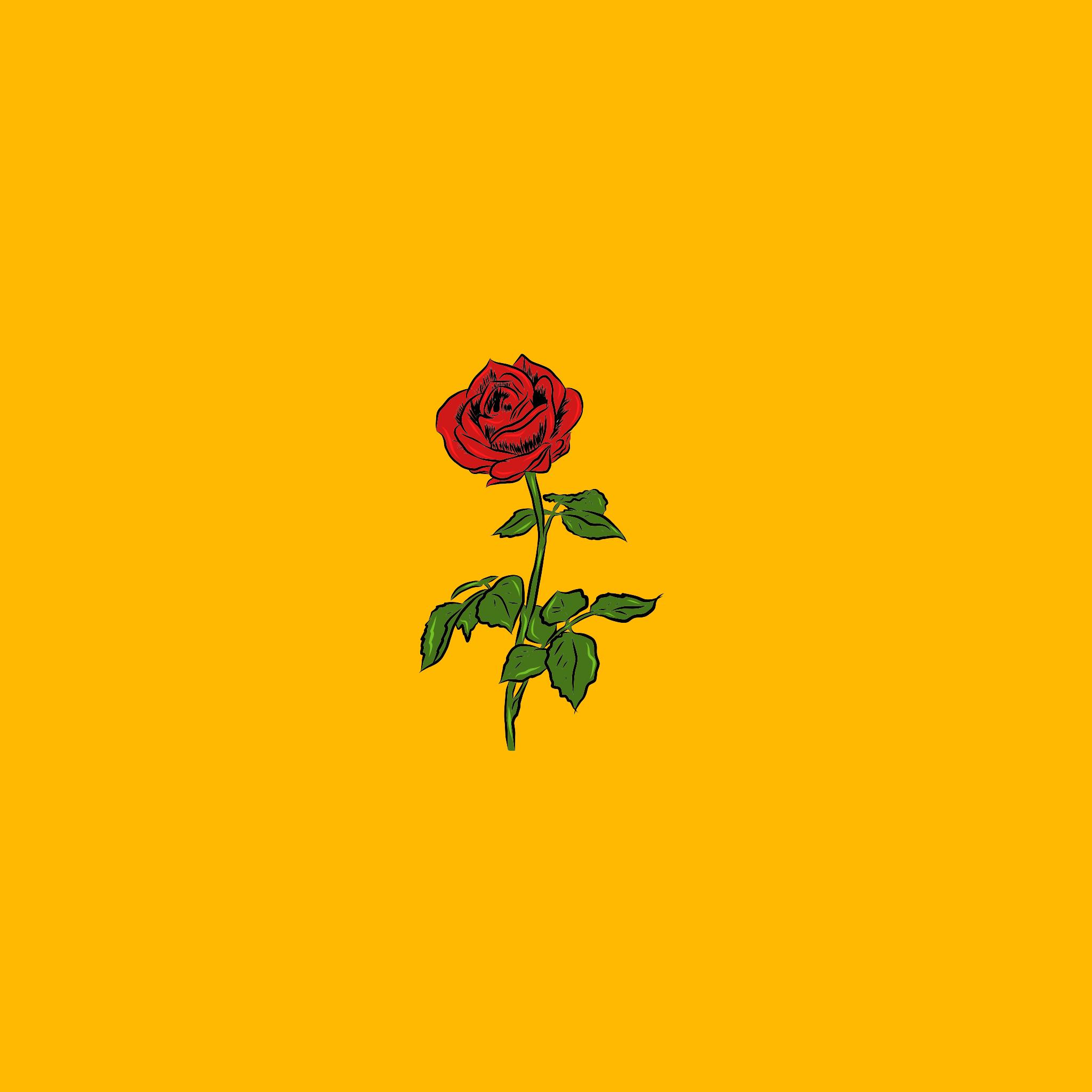 Der Rose Yellow Background Pop Art Wallpaper Yellow Wallpaper