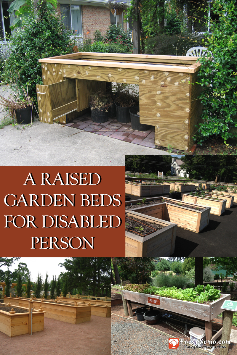 A Raised Garden Beds for Disabled Person