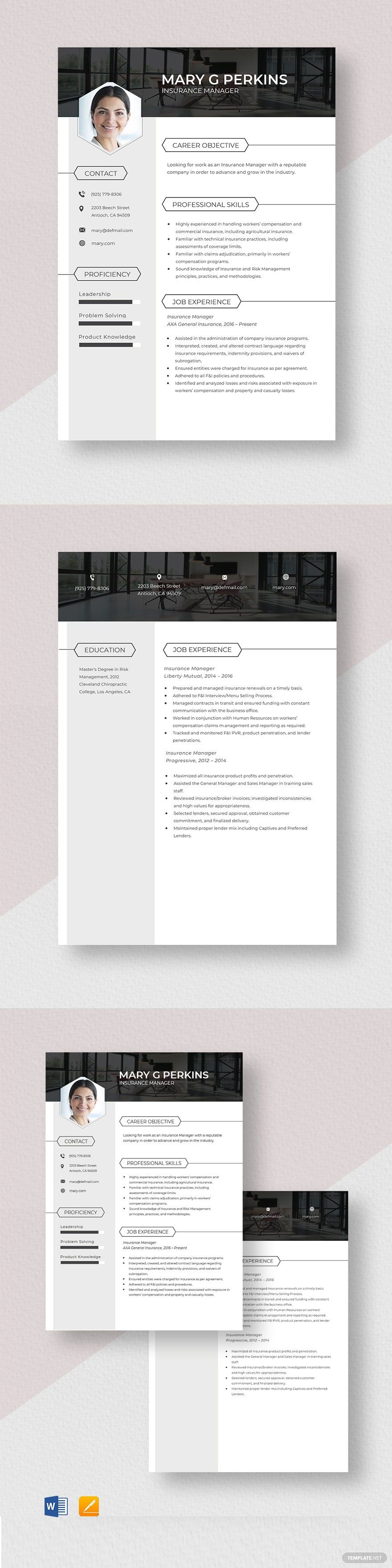 Insurance manager resume template in 2020 resume
