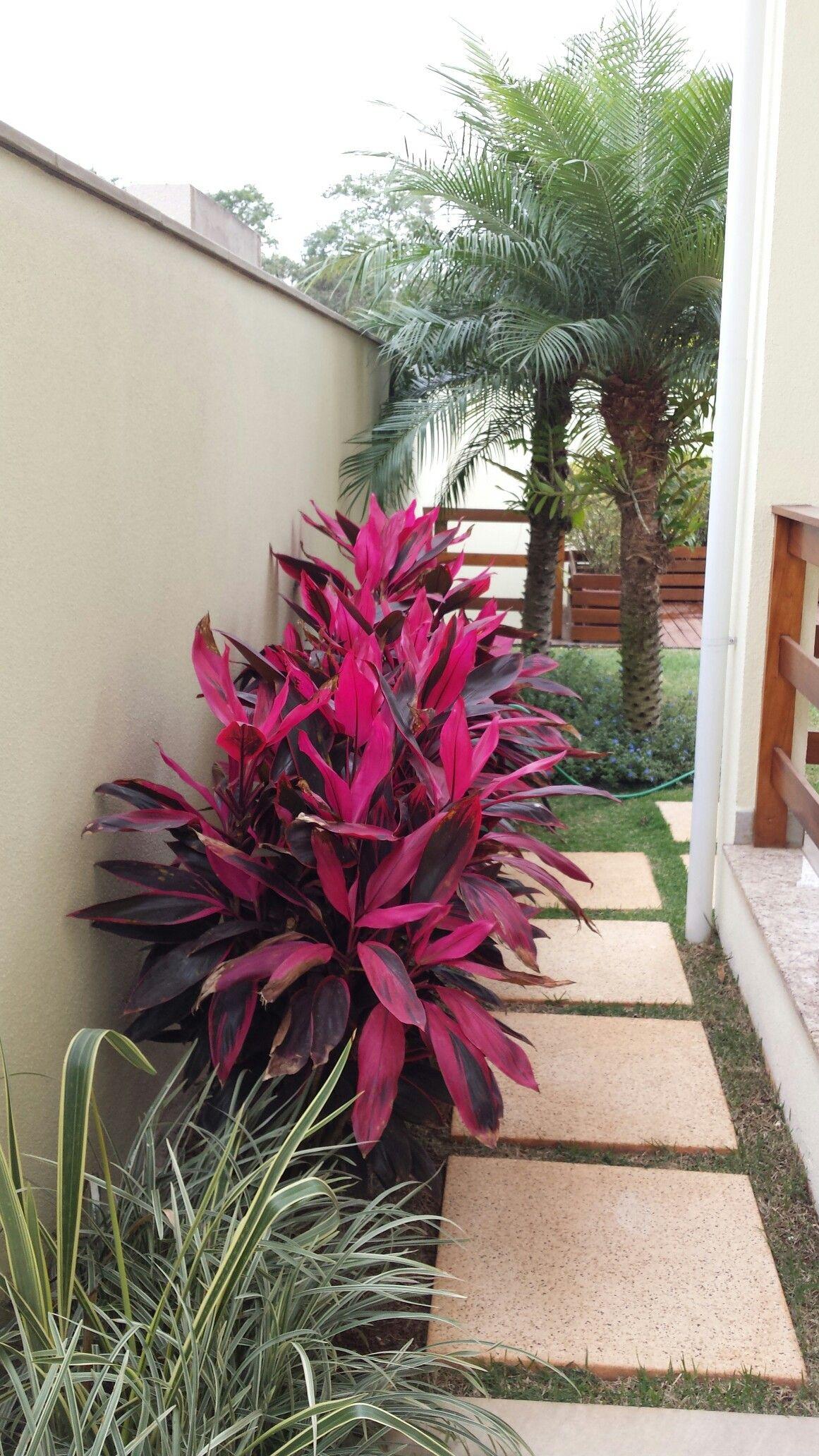 20+ Best Tropical Patio Design Ideas