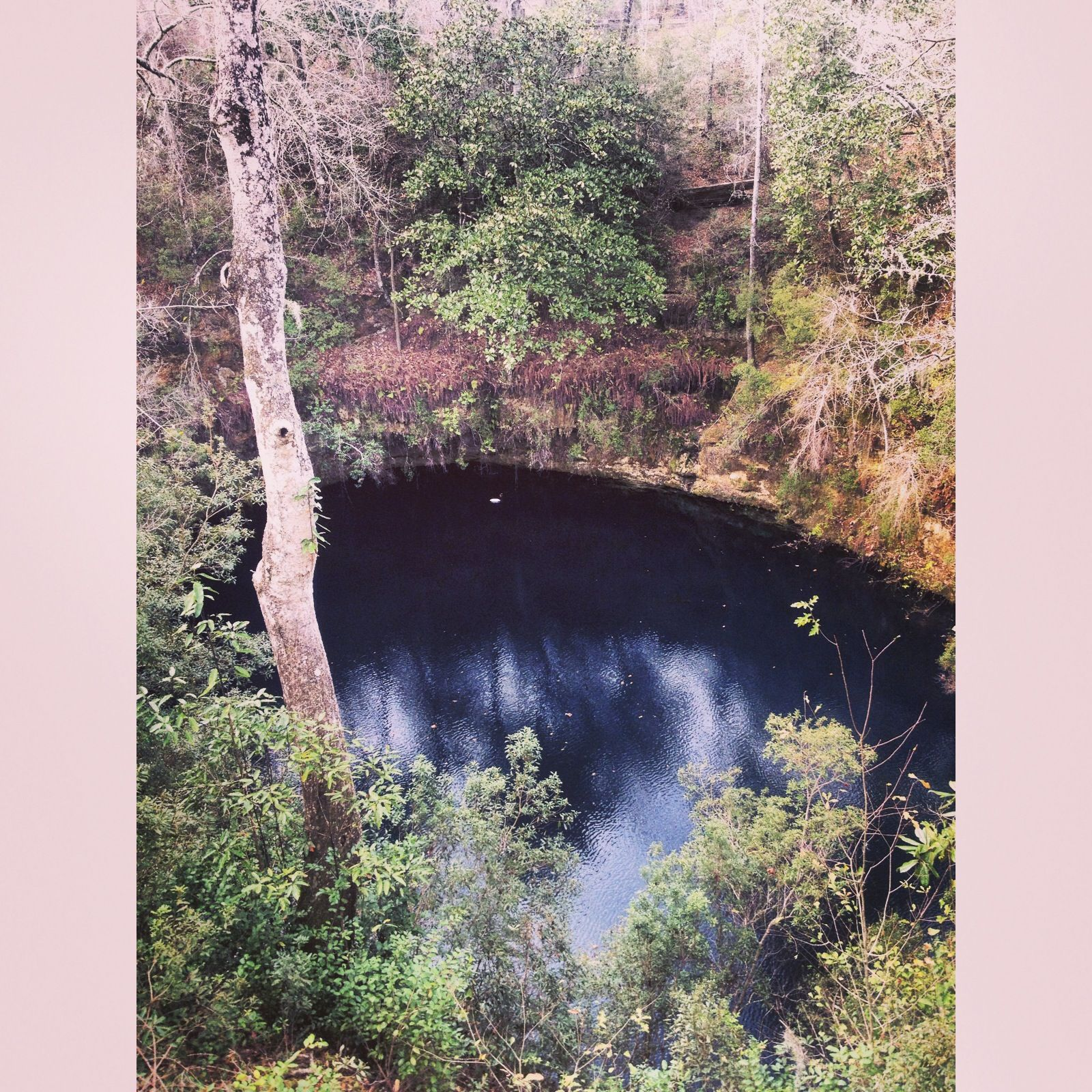 Leon Sinks Geological Area, Leon County, Florida - Take the tree lined  trail to