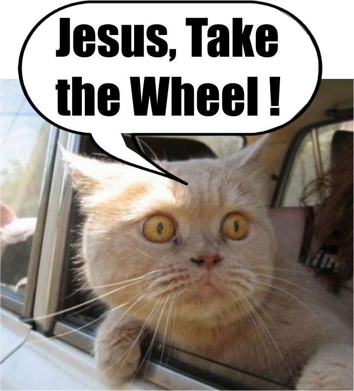 Jesus take the wheel! @Sophia Thomas Thomas Miller @Sarah ...