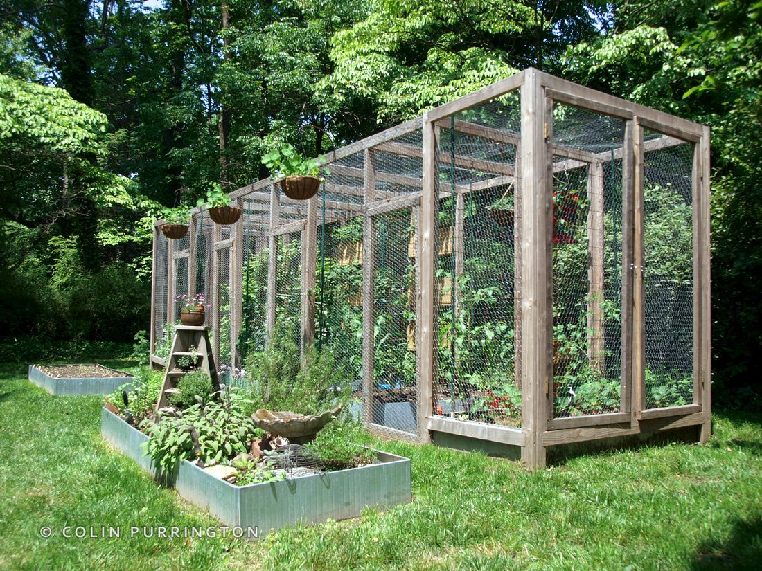 Squirrel Proof Wood Structure For Suburban Gardening Greenhouse Ideas Pinterest Wood