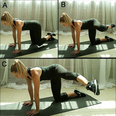 Image result for Kneeling Roundhouse Kick exercise