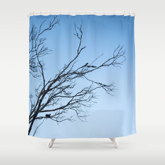 Black Tree Shower Curtain Best Selection In Town Shower