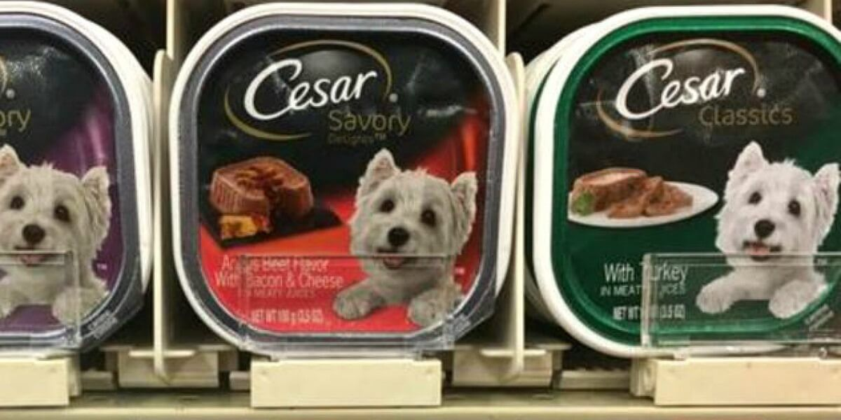 Worst puppy food to buy