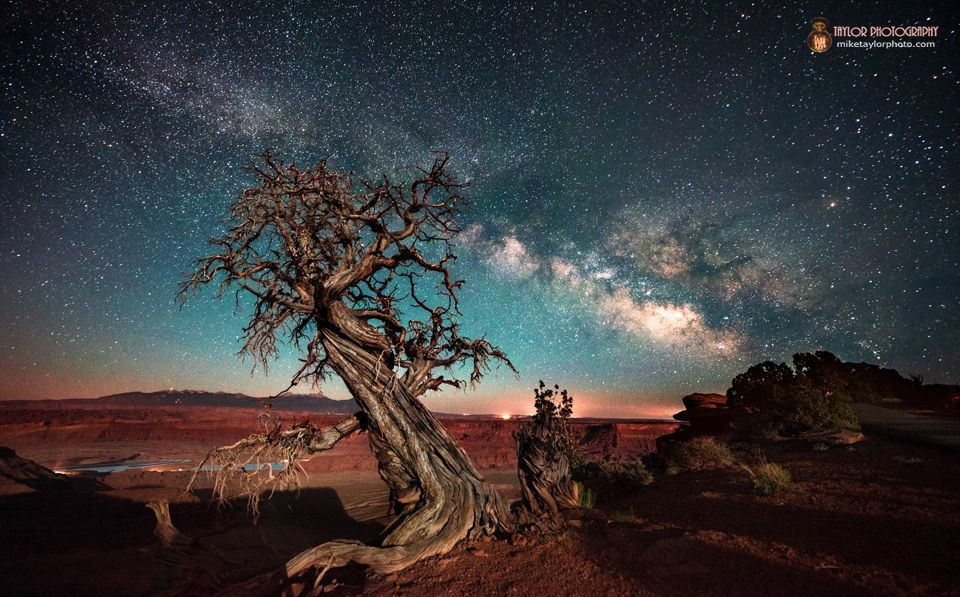 mike taylor, dead horse point at night     on 500px