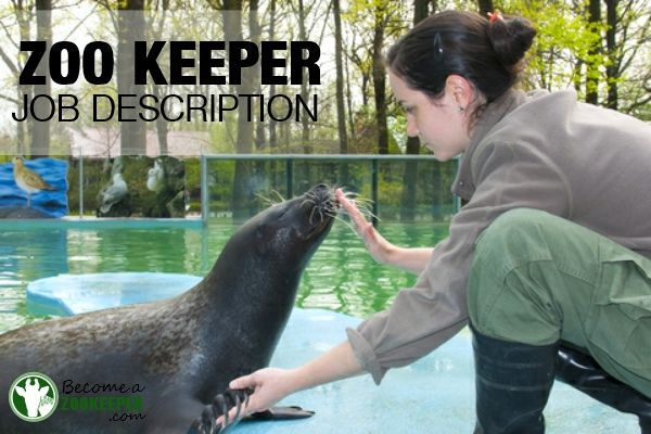 Need Help With Your Job Application This Zookeeper Position