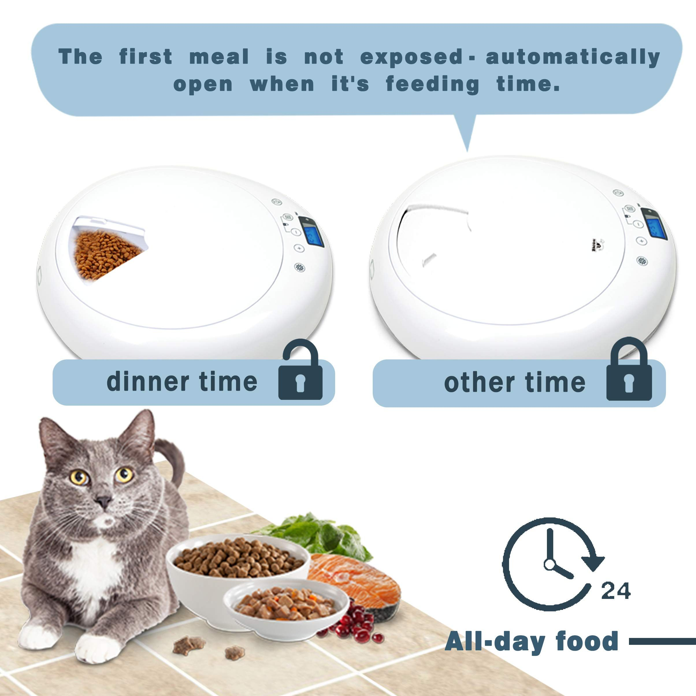 Athorbot Automatic Pet Feeder For Medium Small Cat Dog 6 Meal Trays Wet Dry Food Auto Pet Food Dispenser Programmed Pet Food Dispenser Pet Feeder Food Animals