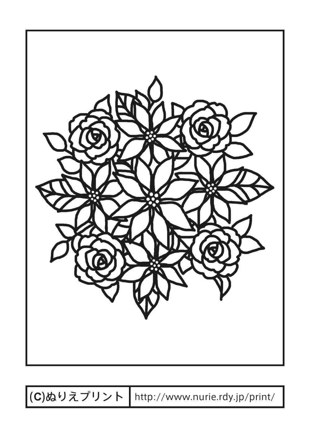 ポインセチアとバラ 主線 黒 冬 クリスマスの花 無料塗り絵イラスト ぬりえプリント 塗り絵 無料 花 塗り絵 無料 塗り絵