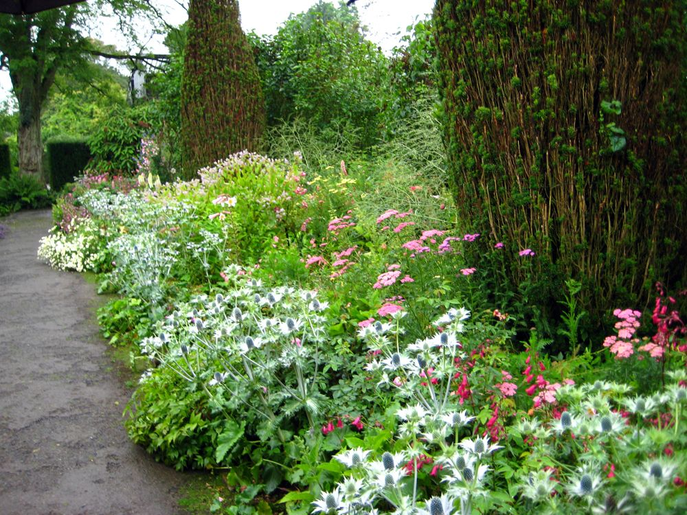 Lancaster Garden Walk: The Rose Walk At Hidcote Manor