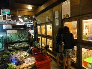 What Is So Fascinating About Pet Shop Shops In Singapore Pet Shop Pets Singapore