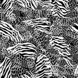 Animal Zebra and Leopard Spots in Black and White