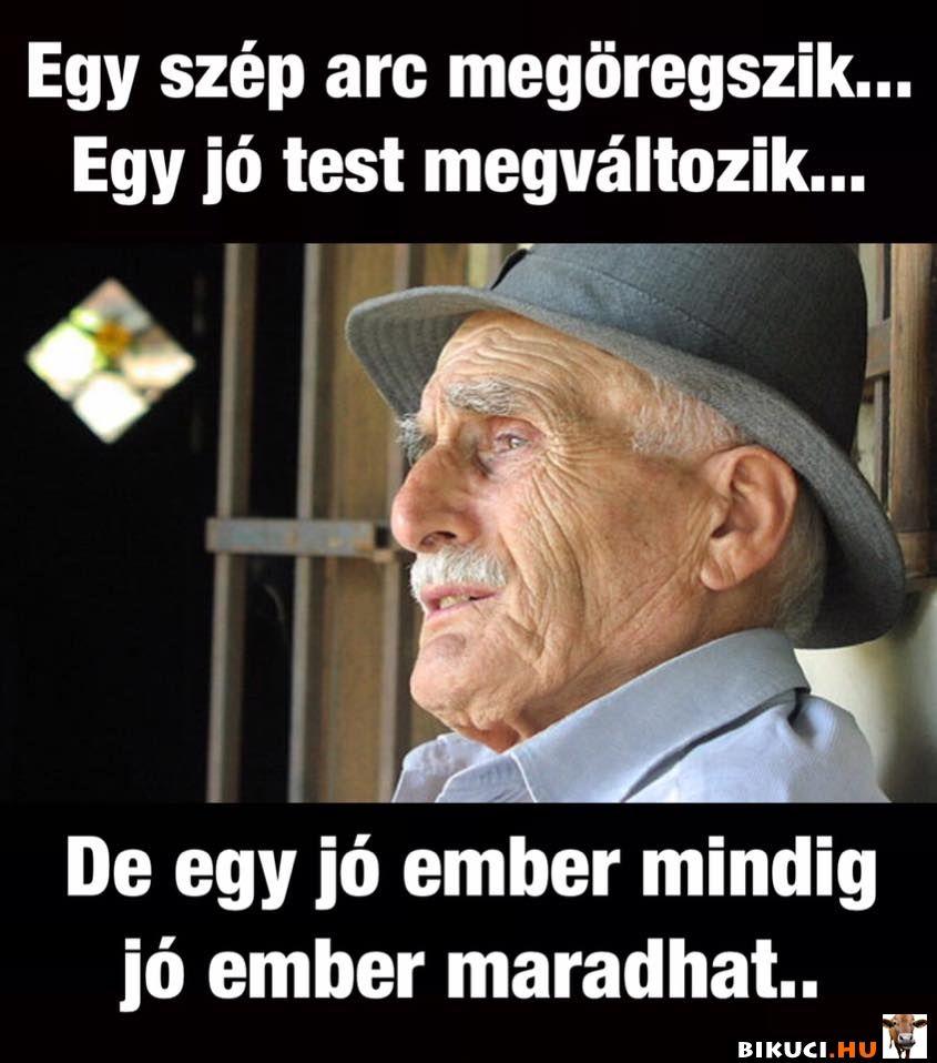 poénos vicces idézetek A nap bölcsessége :) Vicces képek #humor #vicces #vicceskep