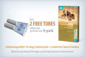 photo about Trifexis Printable Coupon known as Comfort Multi® rebate Coupon Pet dog physical fitness, Animals, Puppies