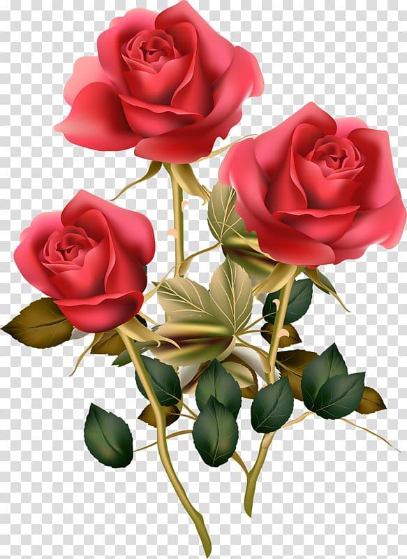 Flower Rose Morning Stem Transparent Background Png Clipart Bunch Of Flowers Drawing Flower Illustration Digital Flowers