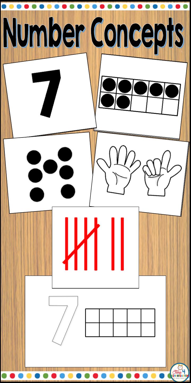 Number Concepts Kindergarten Number Concepts Math Graphic Organizers Literacy Activities Kindergarten [ 1440 x 720 Pixel ]
