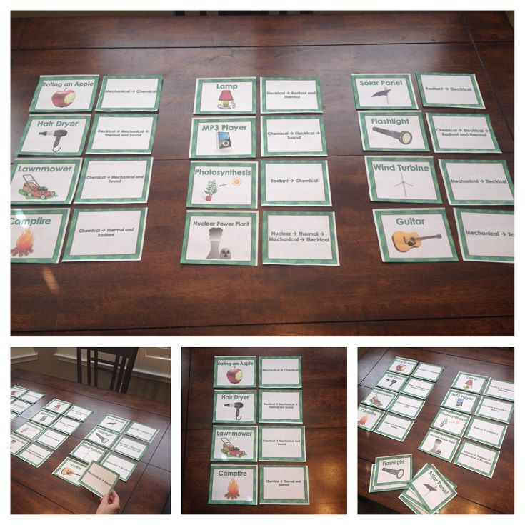 Energy Transformation Card Sort Photosynthesis Physical Science