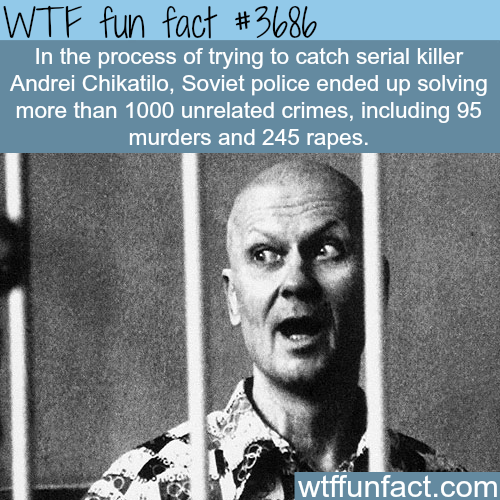 soviet police solved 1000 crimes while trying to catch