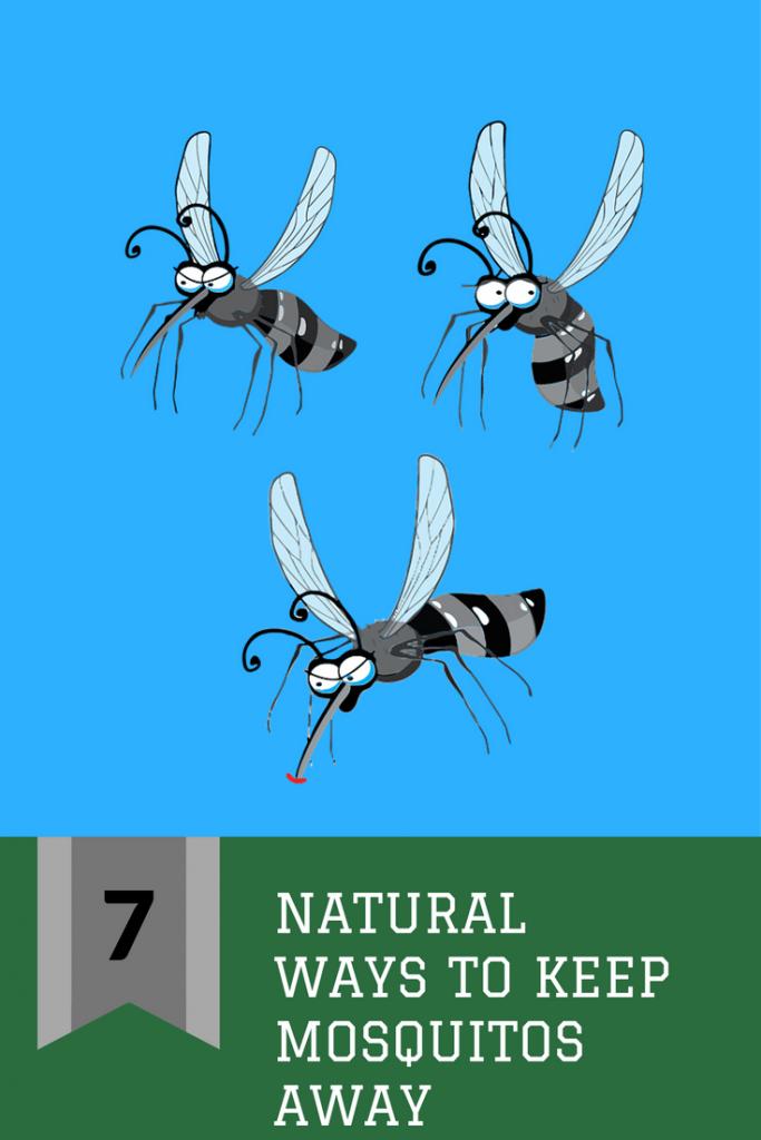 Seven Natural Ways to Keep Mosquitos Away   Keeping ...