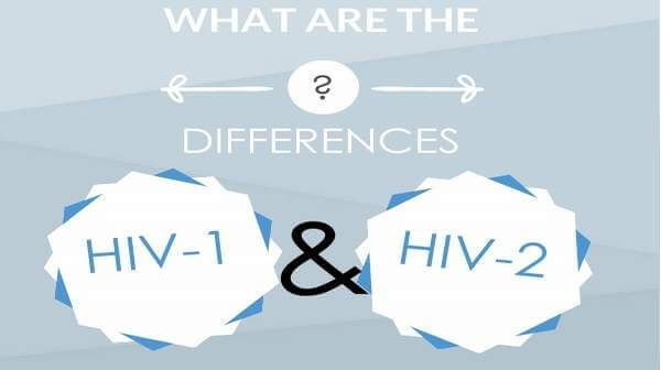 HIV1 and HIV2: 69 Symptoms, Risk and Their Differences