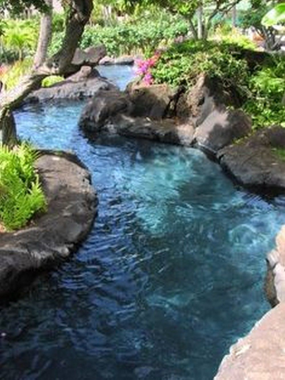 Tropical Home Design With Mini Pool Pool Landscaping Backyard
