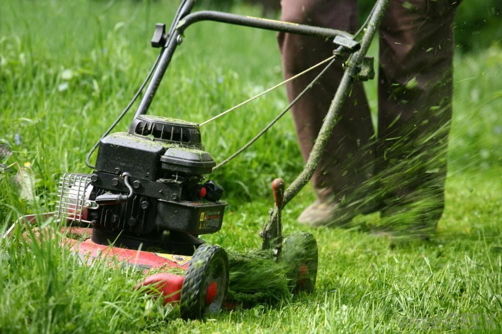 Mowing Wet Grass Here Are The Top 20 Tips To Know Garden Care