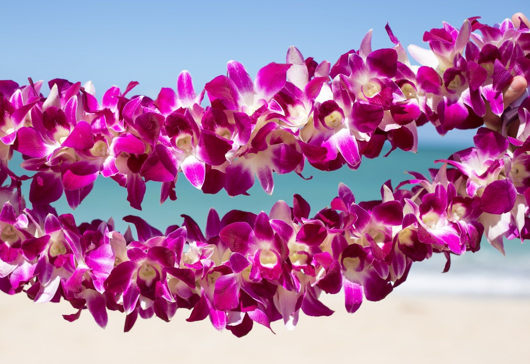 Hawaiian lei greetings hawaii pinterest oahu hawaii vacation hawaiian lei greetings m4hsunfo