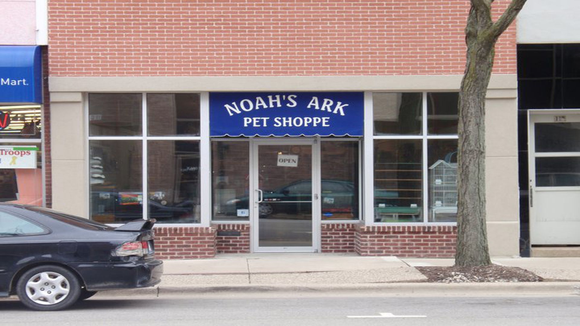 Noah S Ark Is A Twelve Year Olds Dream Come True Our Pet Shoppe Offers Effingham S Healthiest Critters And A Helpful Team An In 2020 Effingham Noahs Ark Outdoor Decor
