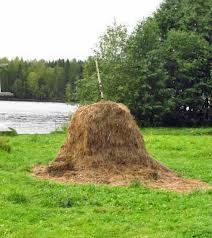 House Made Out Of Hay Google Search Little Pigs House Made
