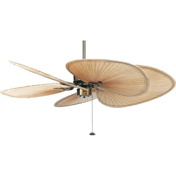 Fanimation Islander 80 Inch Antique Brass Ceiling Fan In 110 Volts Motor Only