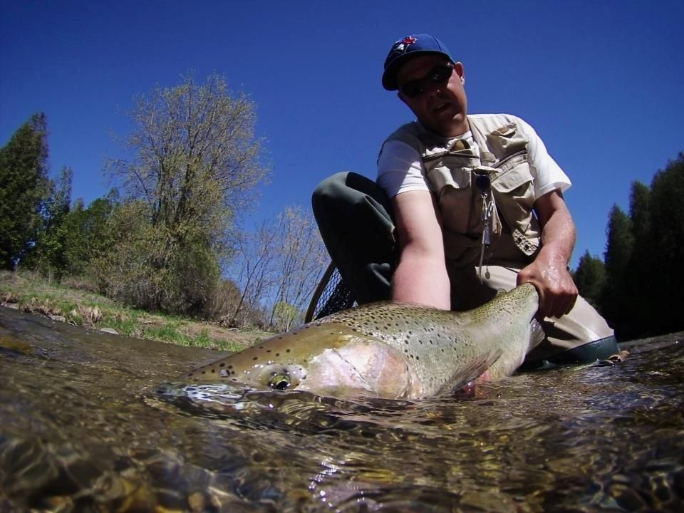 Releasing a rainbow trout back to the Ganaraska River in Port Hope, #Ontario. #fishing, #flyfishing,  http://www.northumberlandtourism.com/en/outdoor-adventure/Fishing-Ganaraska-River--Ganny-.asp