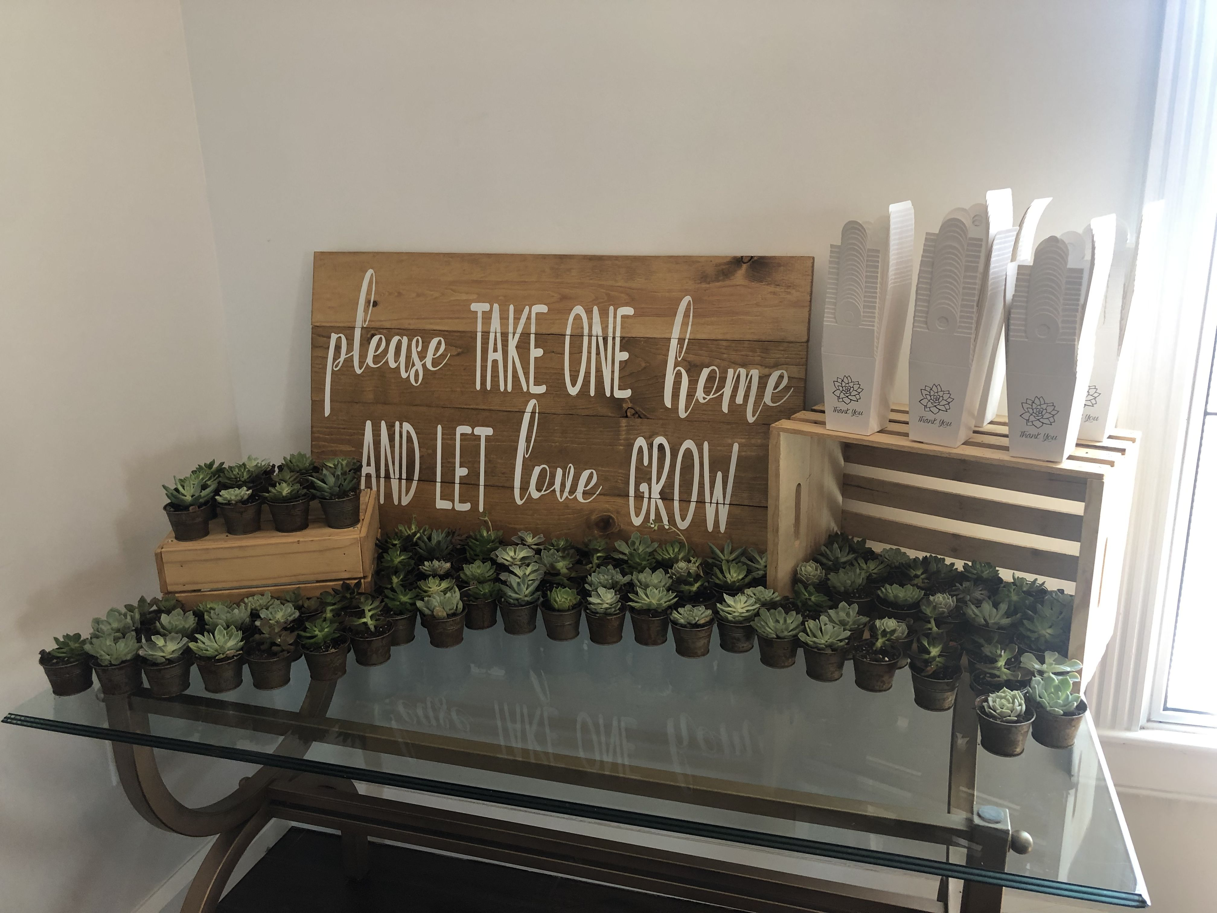 Succulent favors bride brought in sign our crates