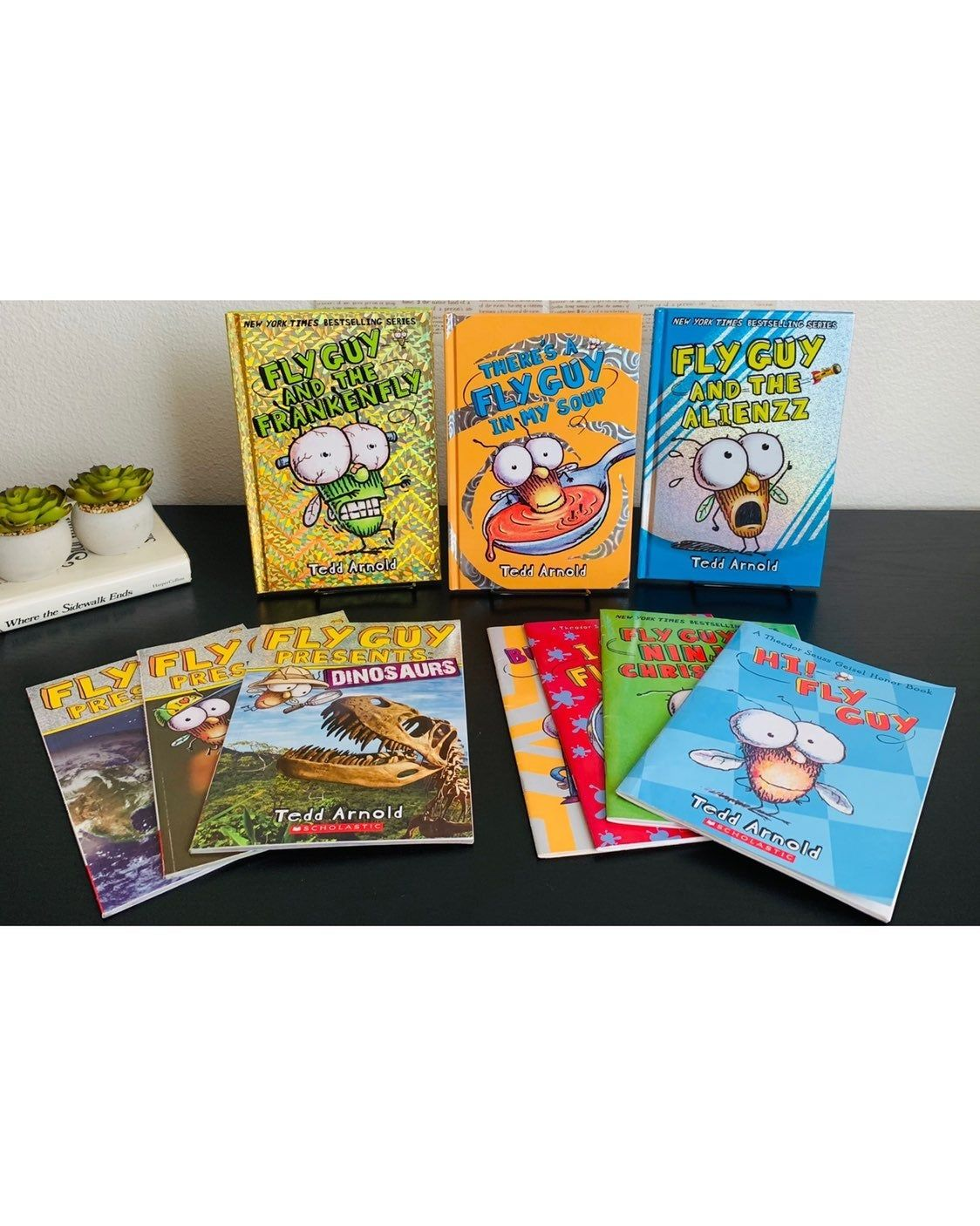This Bundle Includes Ten Fly Guy Books By Tedd Arnold
