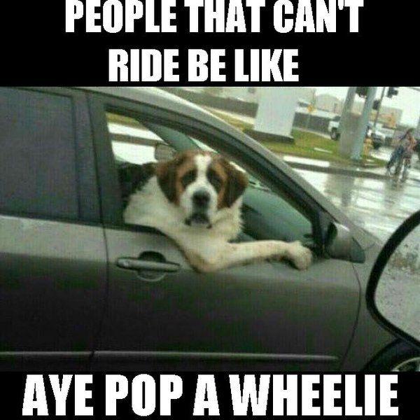 Twitter Humor Funny Images Love Memes