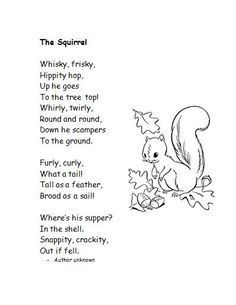 poems about squirrels - Google Search