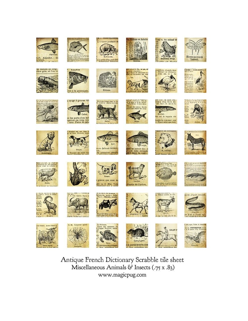Antique French Animals And Insects Scrabble Digital Collage Sheet 75 X 83 Inch 19mm X 21mm Line Drawings Digital Collage Sheets Artist Supplies Collage Sheet
