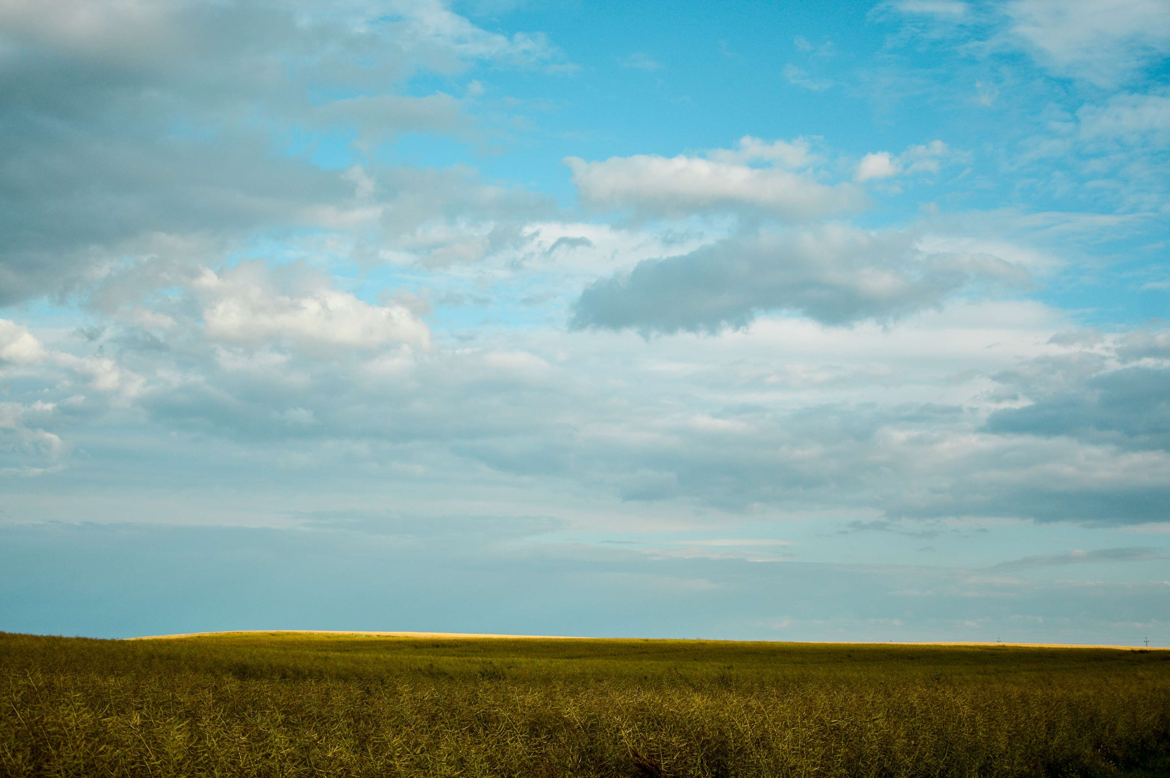 Agriculture Clouds Country Countryside Cropland Daylight Environment Fall Farm Farmland Field Grass Horizon Landsca Landscape Countryside Outdoor Nature grass field sky clouds horizon
