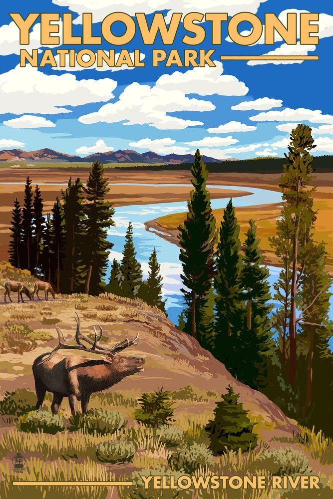 Print Yellowstone National Park Wyoming Yellowstone River Elk Lantern Press Artwork National Park Posters Travel Posters Vintage Travel Posters