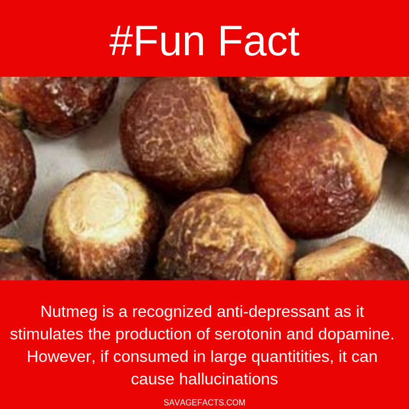 Interestingfacts Nutmeghmmm Funfacts Healthy Wtffact Nutmeg Spices Facts Aboutfacts About Nutmeg Nutmeg Hm Nahrungsinformationen Fakten Lebensmittel