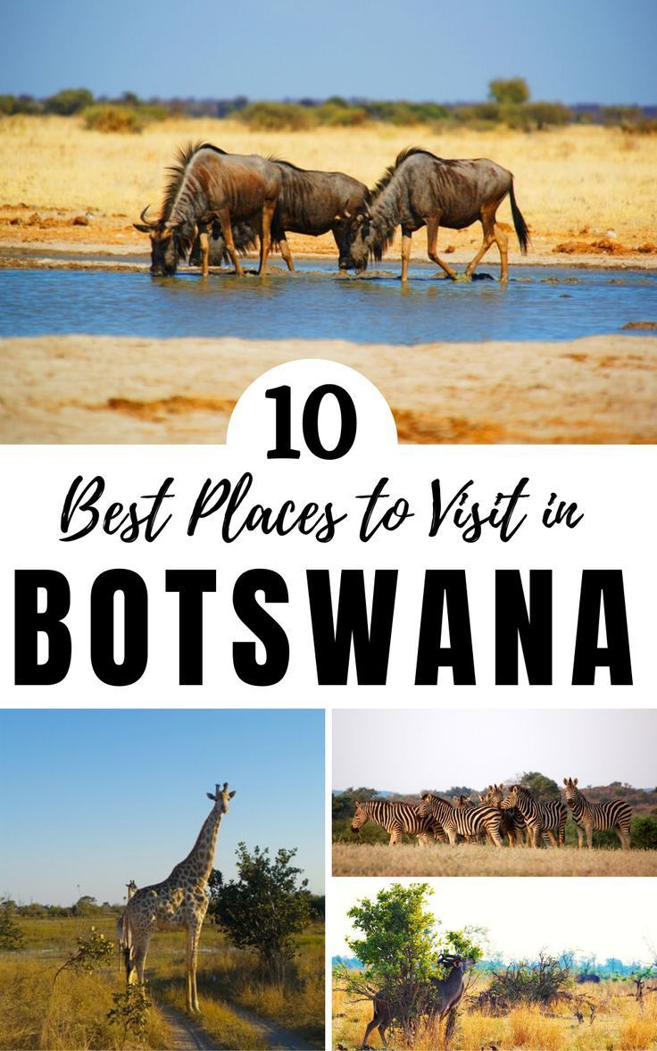 Travel Blogs and Guides about Botswana | wordoftravel -   18 travel destinations Africa adventure ideas