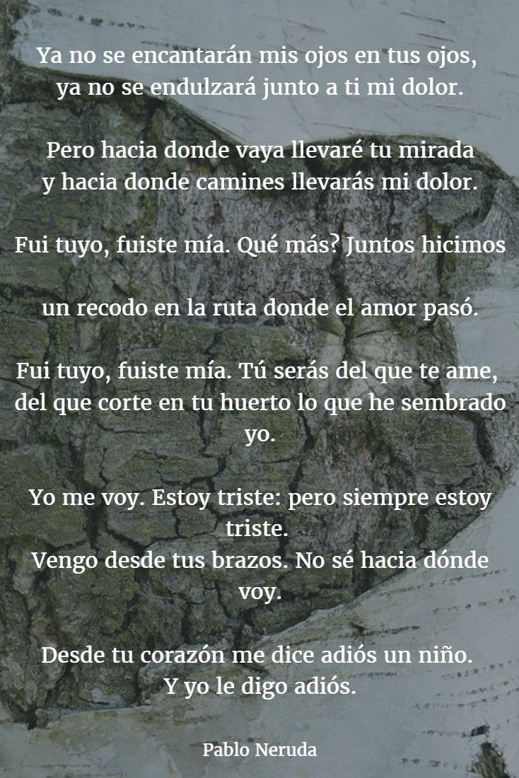 Poemas De Pablo Neruda 6 Poemas De Amor Románticos Poemas Románticos Poesia De Neruda