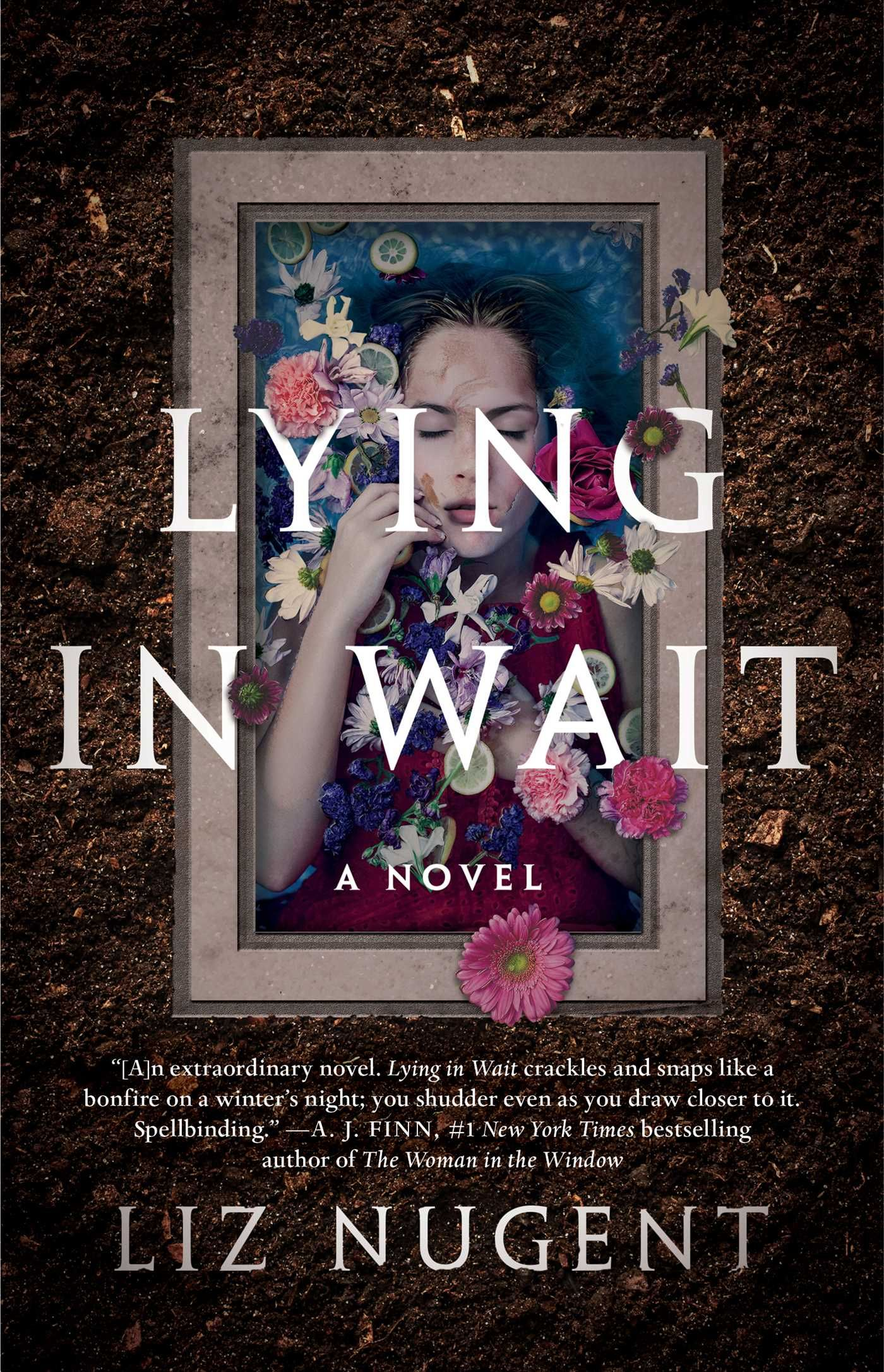 Lying In Wait By Liz Nugent Review Good Thriller Books Psychological Thrillers Thriller Books