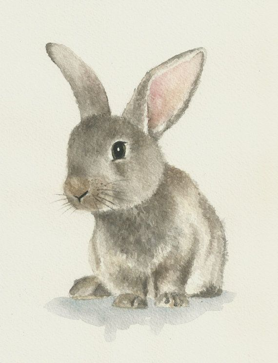 Pintura acuarela original conejito conejo. Perfecto para cualquier ...