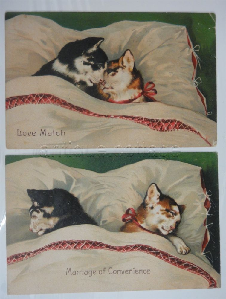 Love Match And Marriage Of Convenience Vintage Cat Romance Postcards 1908 Cat Art Illustration Cats Postcard