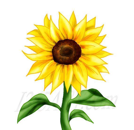 Beautiful Golden Yellow Sunflower Clipart Scrapbooking by ...