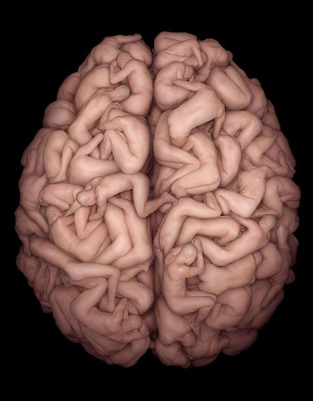 cerebro-humano.jpg (620×793) | Fx makeup | Pinterest | Fx makeup