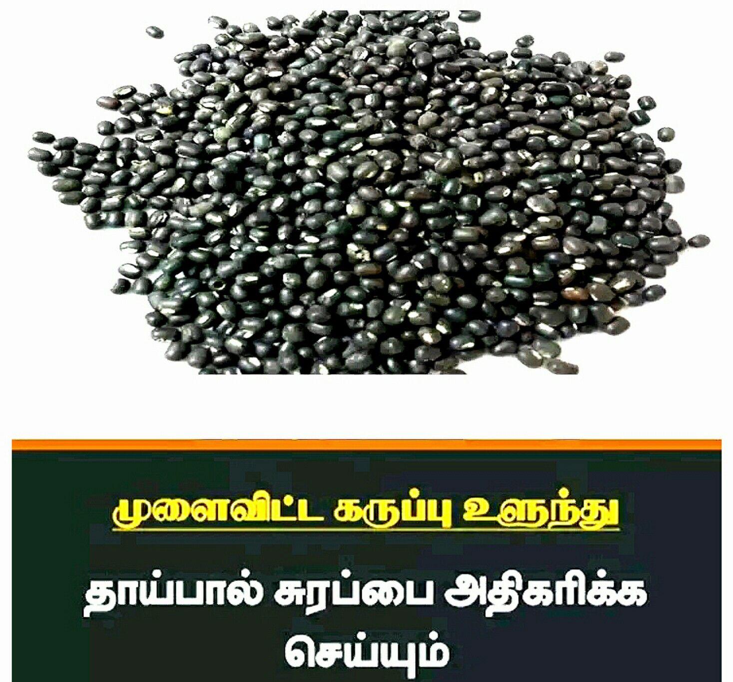 Pin by Vasu, Chittoor on Tamil, Vasu, Chittoor Healthy